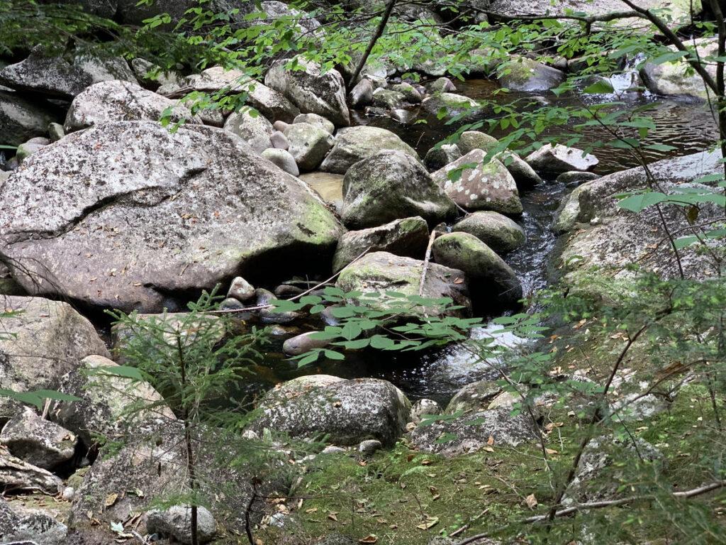 Georgiana Falls in Lincoln, New Hampshire.