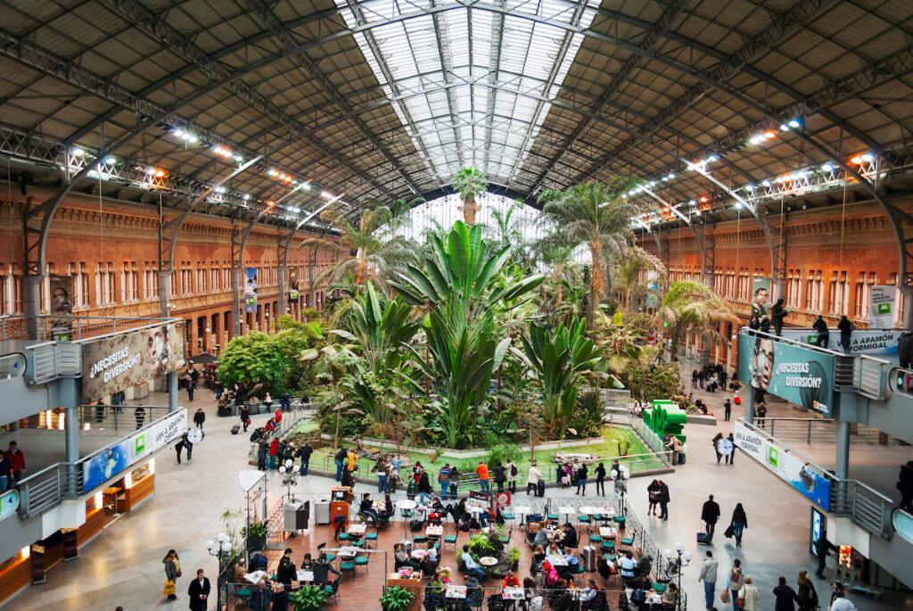 Giant plants inside Atocha station.