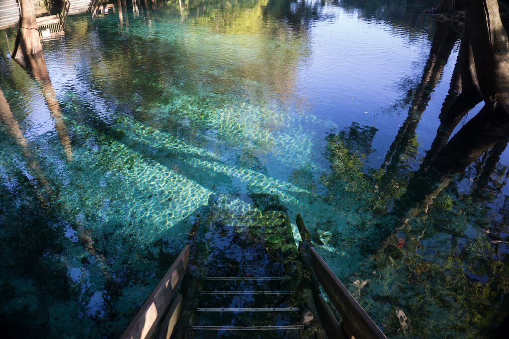 Ginnie Springs in High Springs, Florida.