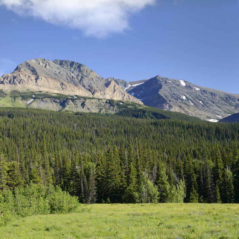 Glacier National Park views near Cut Bank, Montana.