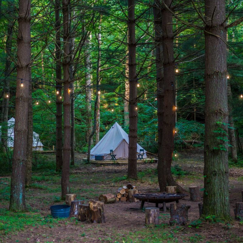 Glamping in the woods.