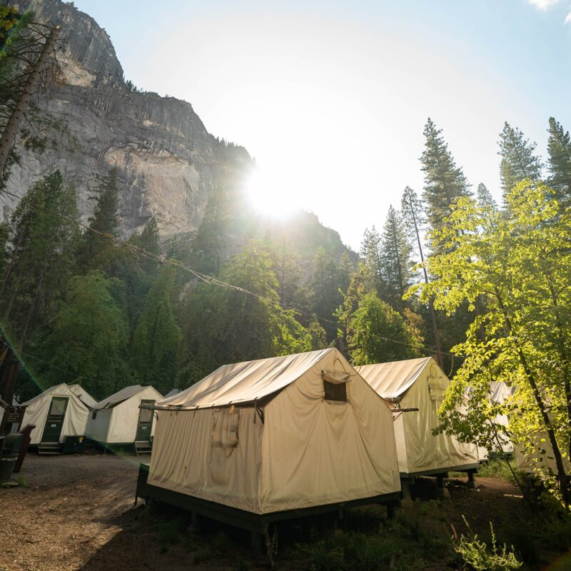 Glamping tents at Half Dome Village in Yosemite National Park.