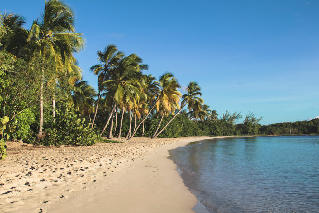 Grand Anse, one of the most popular beaches on Martinique.