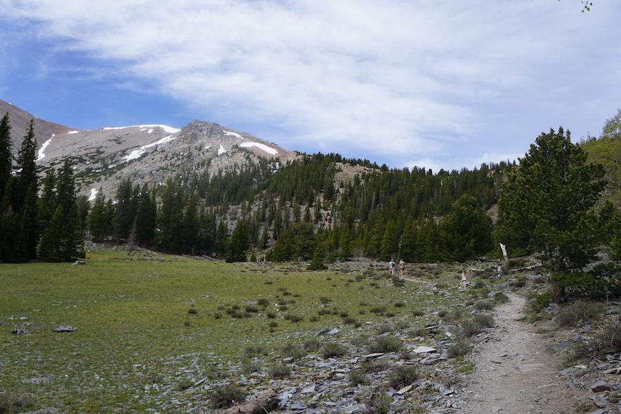 Great Basin National Park in Nevada.