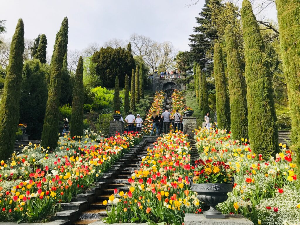 Guests admire the flowers on the Isle of Mainau.