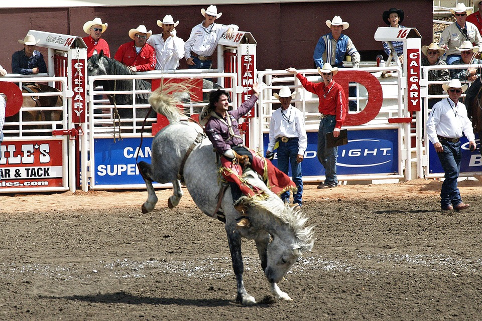 Guy riding a horse at a rodeo