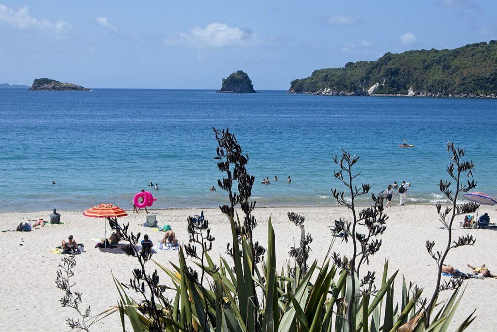 Hahei Beach in New Zealand.