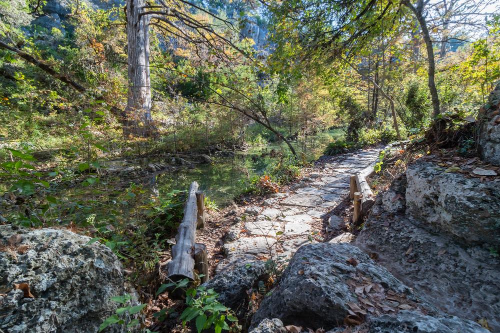 hamilton pool trail