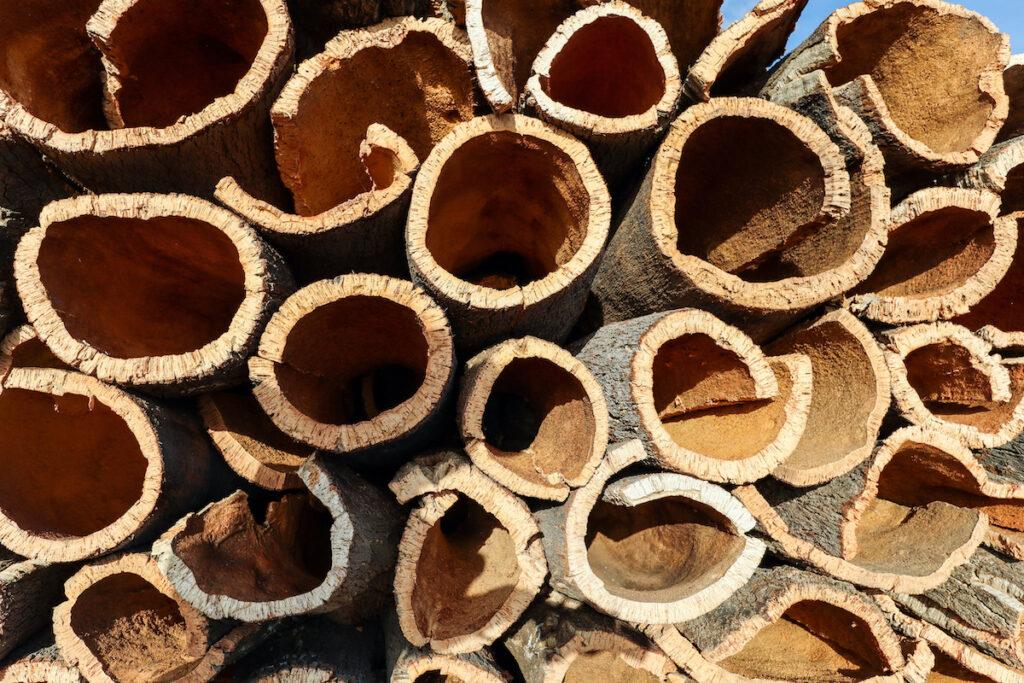 Harvested cork in the Alentejo region.