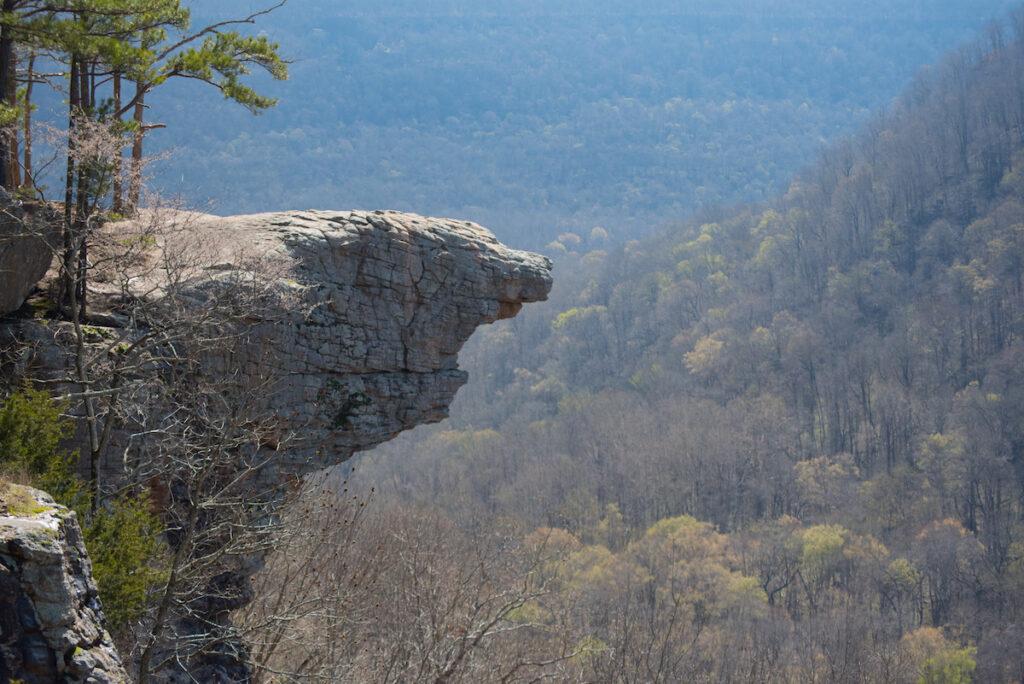 Hawksbill Crag in the Ozarks.