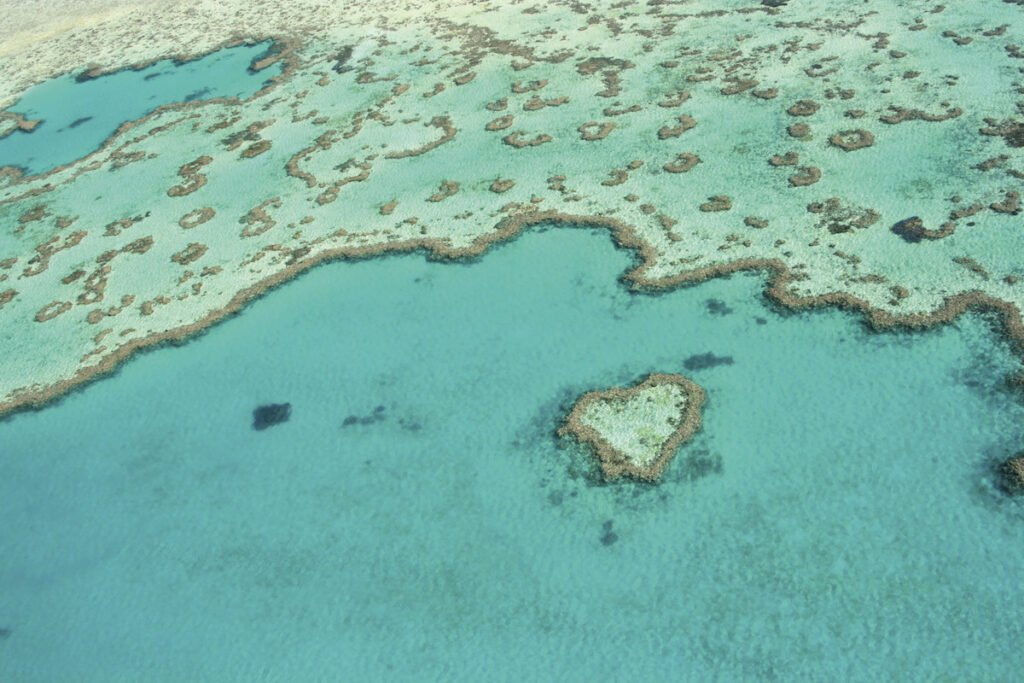 Heart Reef in the Whitsundays on the Great Barrier Reef.