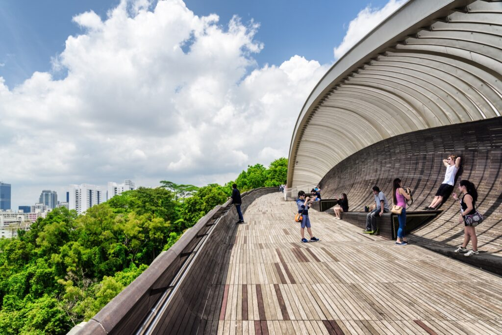 Henderson Waves bridge in Singapore.