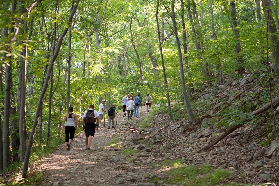 Hikers enjoying a trail in Joe Wheeler State Park.