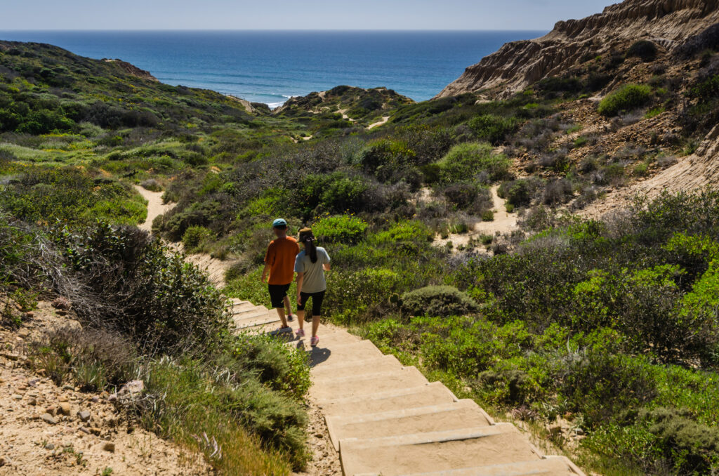 Hikers in a trail in Torrey Pines State Natural Reserve.