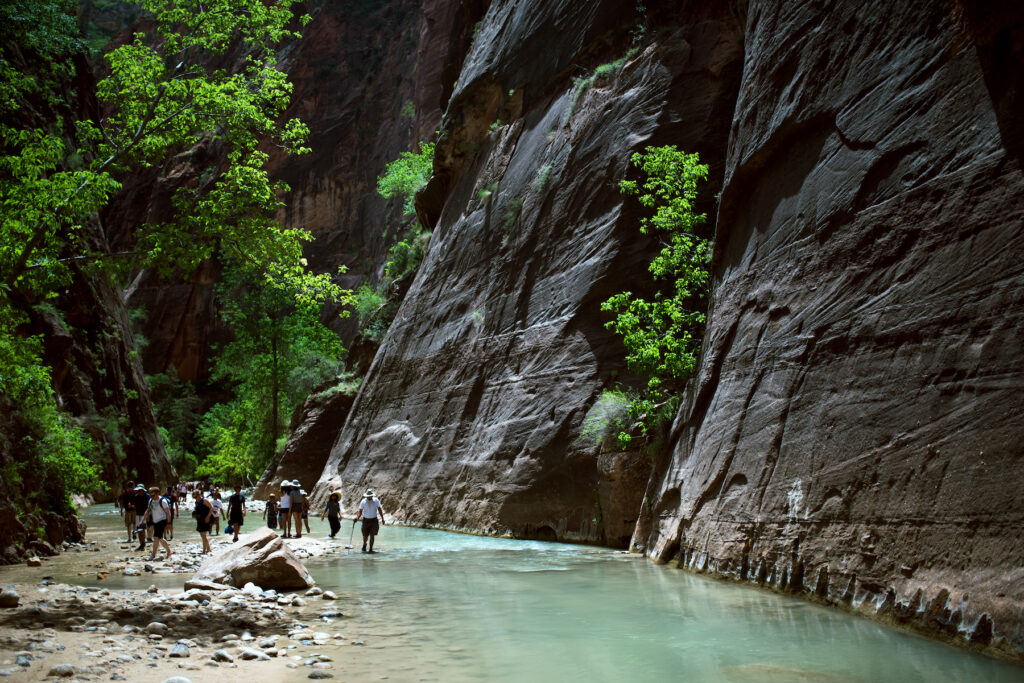 Hikers in the Narrows at Zion National Park.