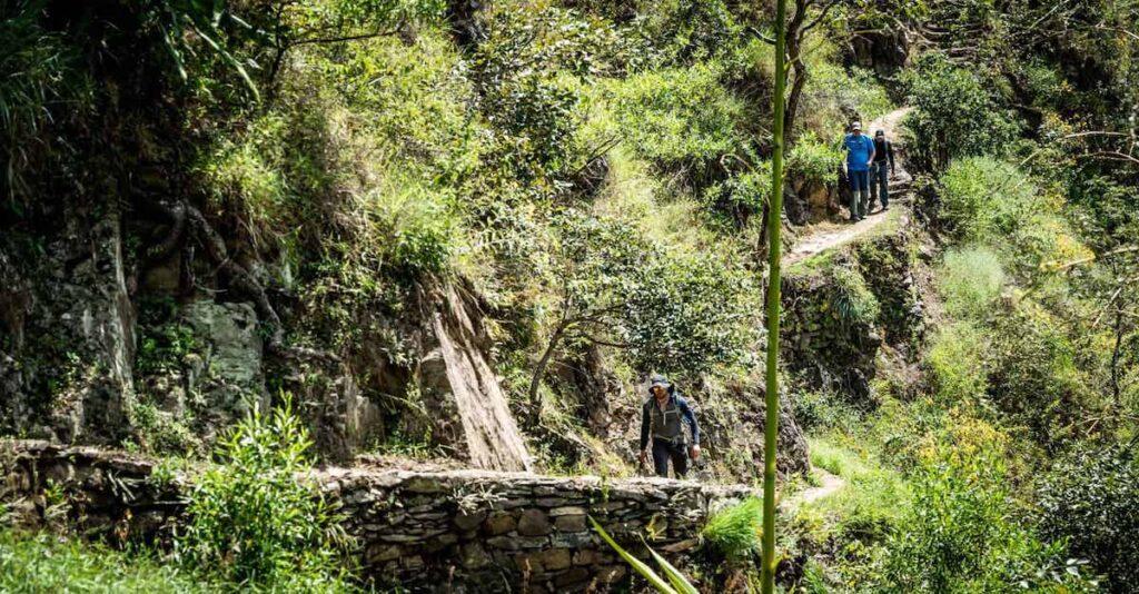 Hiking a jungle trail in Peru.