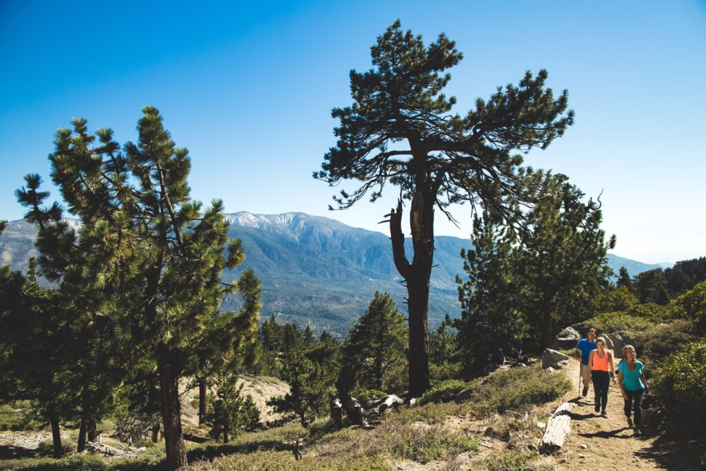 Hiking in Big Bear, California.