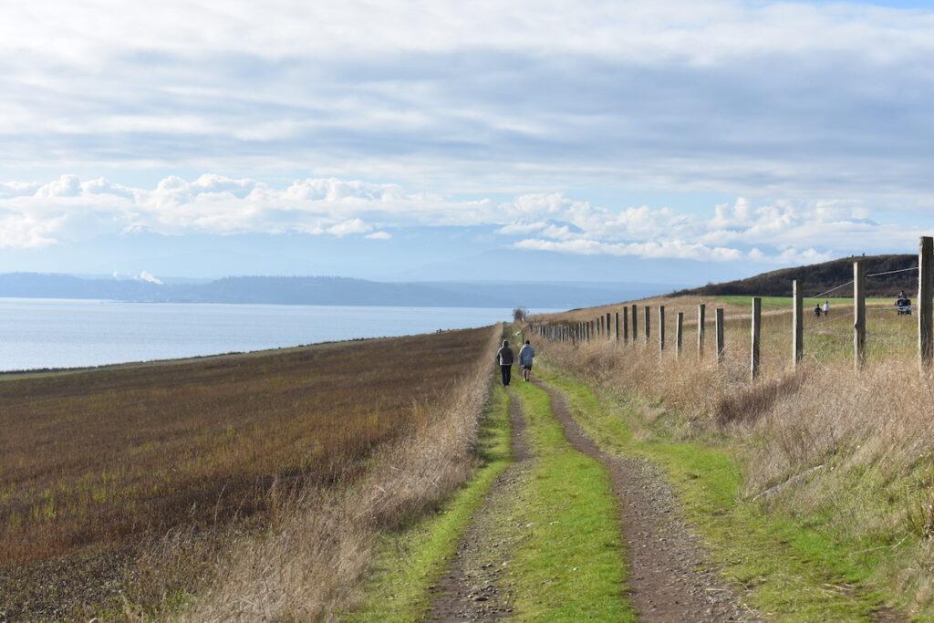 Hiking trail on Whibdey Island, Washington.