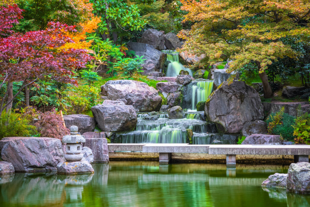 Holland Park's Kyoto Garden in London.