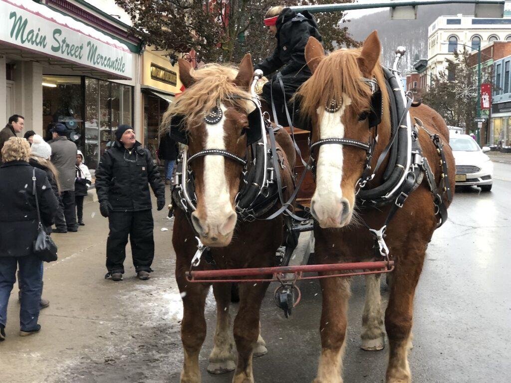 Horse-drawn carriage rides in Bradford, Pennsylvania.