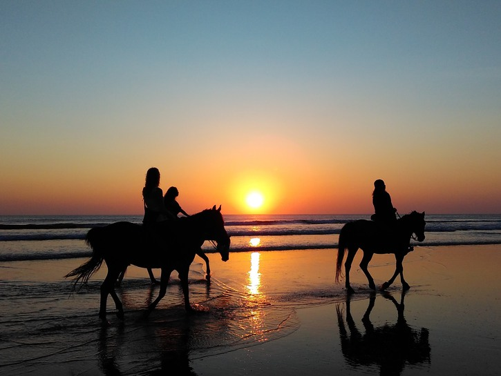 Horse riding on the beach at sunset in Barbados