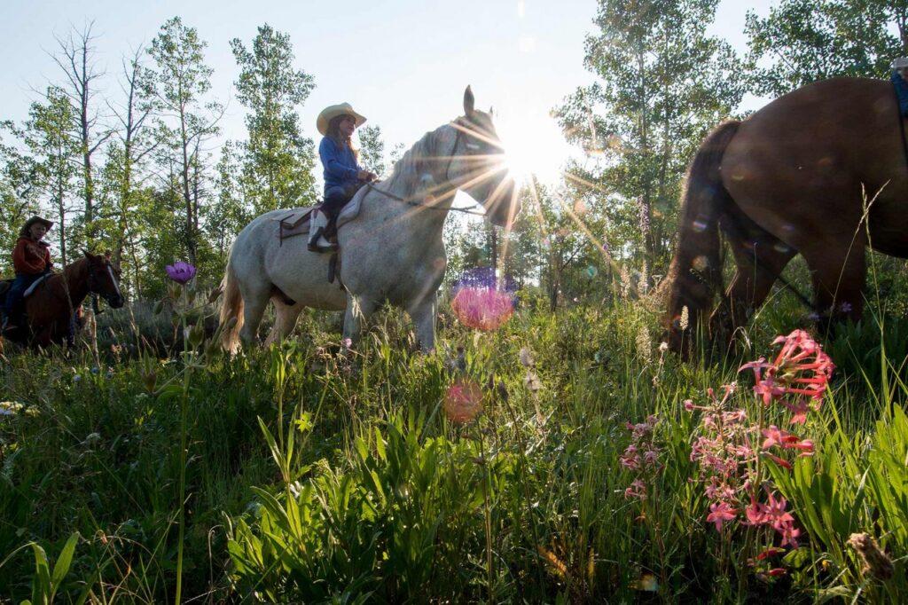 Horseback riding in Jackson Hole.