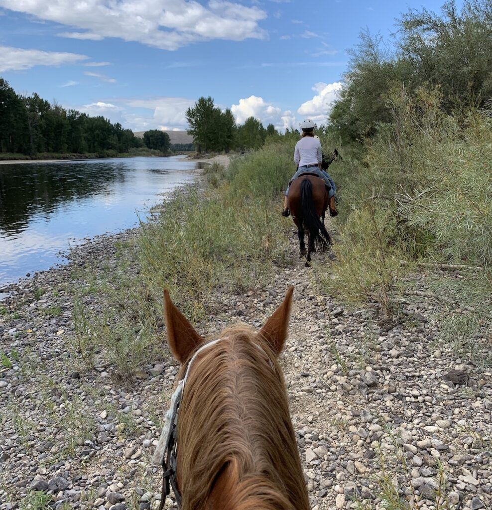 Horseback riding in Montana.
