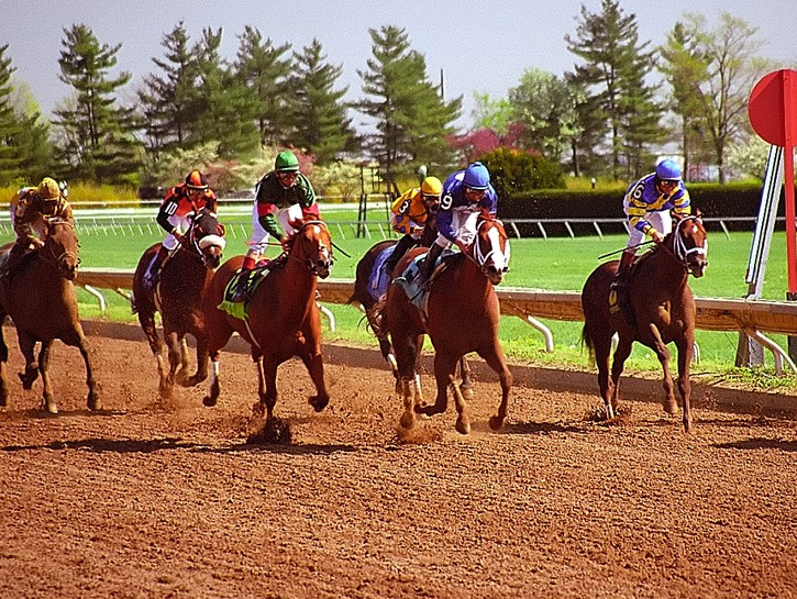 Horses racing on track at Keenelands, Kentucky