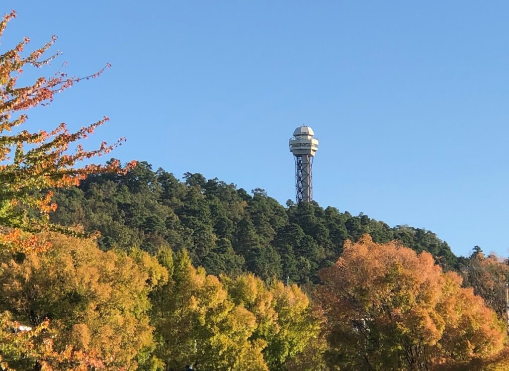 Hot Springs Mountain Tower.