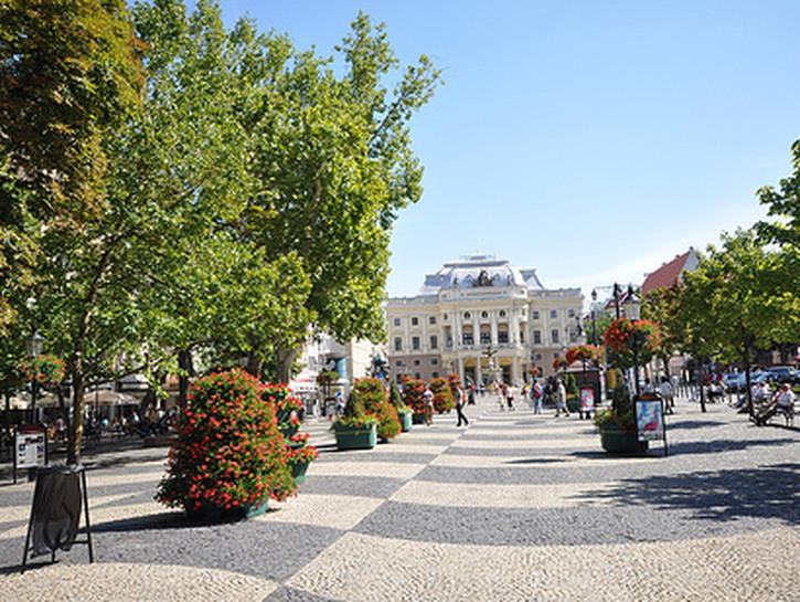 Hviezdoslavovo Namestie with green trees and grey paving stone