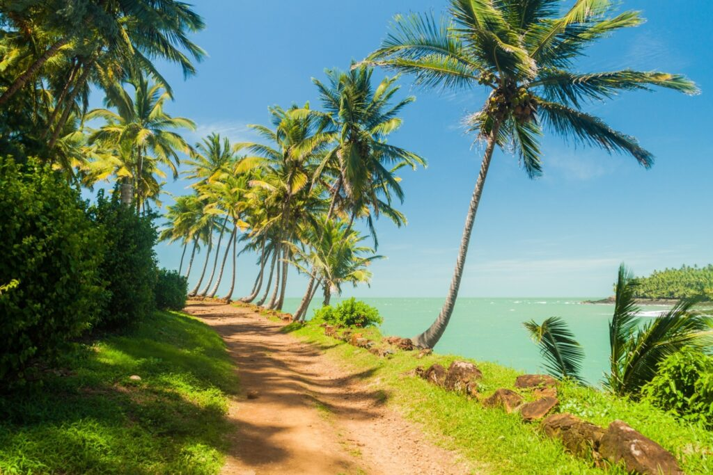 Ile Royale in French Guiana.