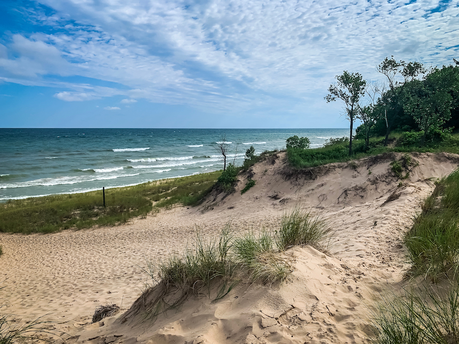 Indiana Dunes State Park along the shore of Lake Michigan.