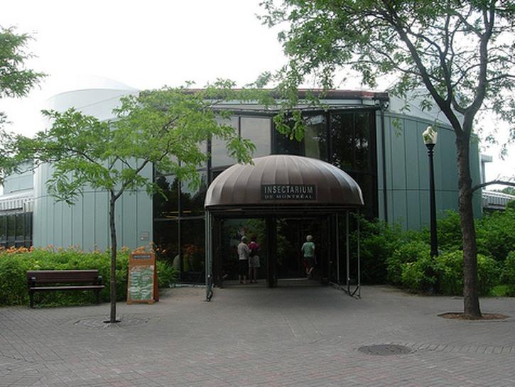 Insectarium entrance