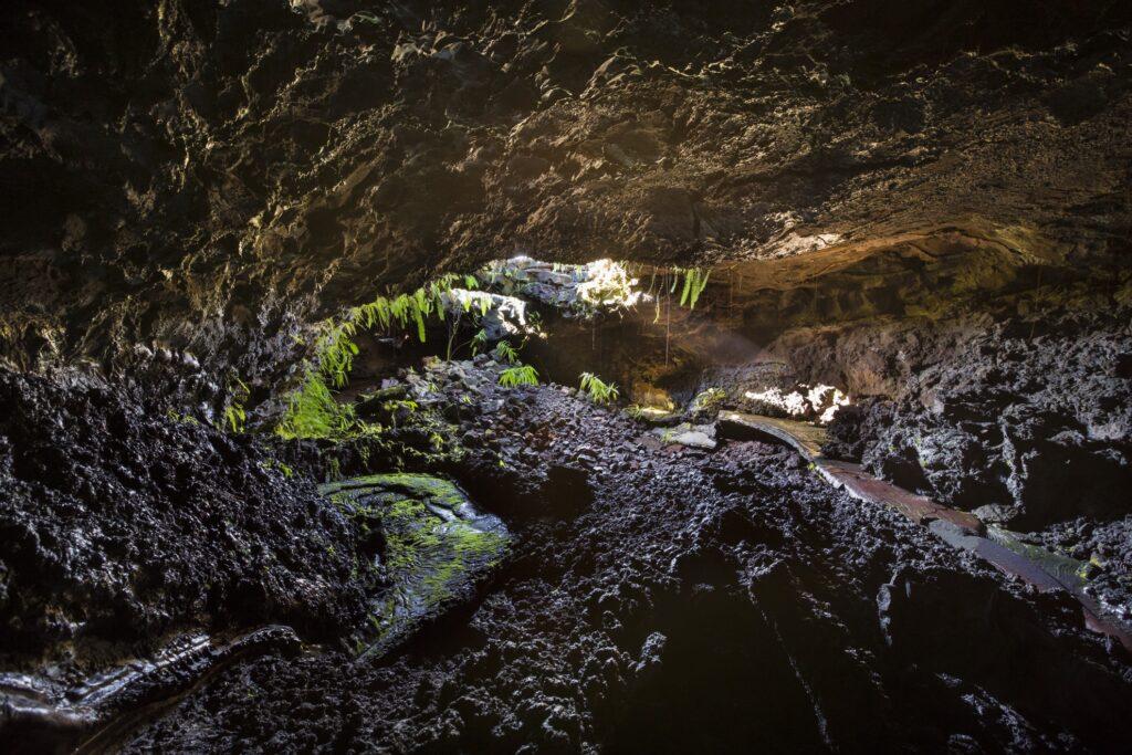 Inside a lava tunnel on Reunion Island.