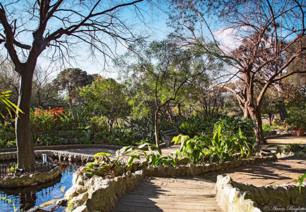 Inside The Alameda gardens in Gibraltar.
