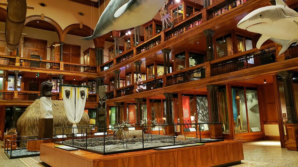 Inside the Bishop Museum.