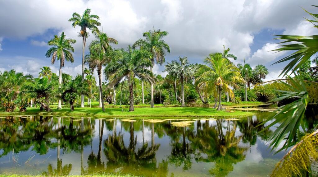 Inside the Fairchild Tropical Botanic Garden.