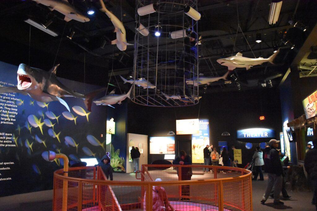 Inside the Mystic Aquarium in Connecticut.