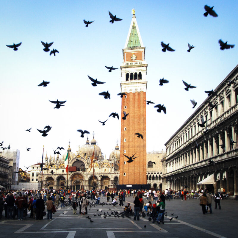 It is illegal to feed the pigeons at St. Mark's Square in Venice, Italy.