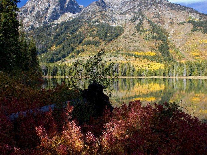 Jackson's Hole, Wyoming
