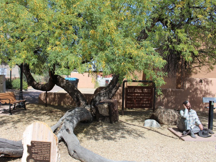 Jail Tree Felon, talking statue chained to tree with plaque, Wickenburg Arizona.