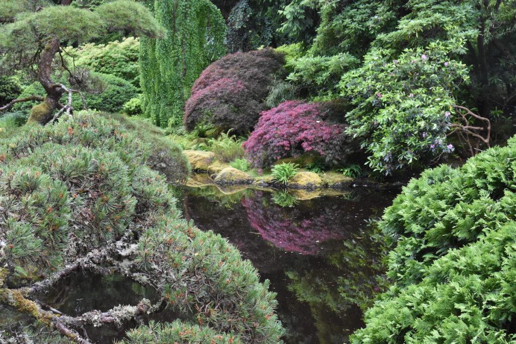 Japanese Garden at Bloedel Reserve.