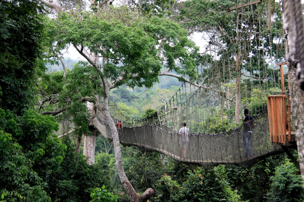 Kakum Canopy Walkway in Ghana.