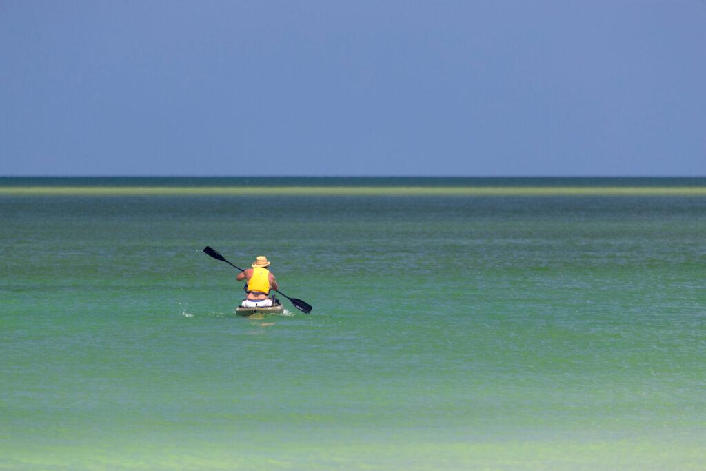Kayaking in Siesta Key, Florida.