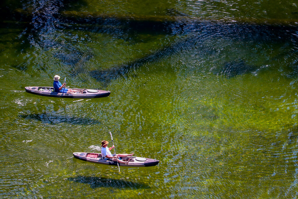 Kayaking on Idaho River, McCall, Idaho.