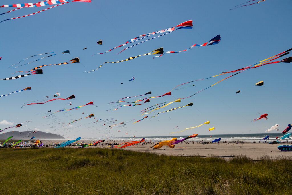 Kites flying over Long Beach, Washington.