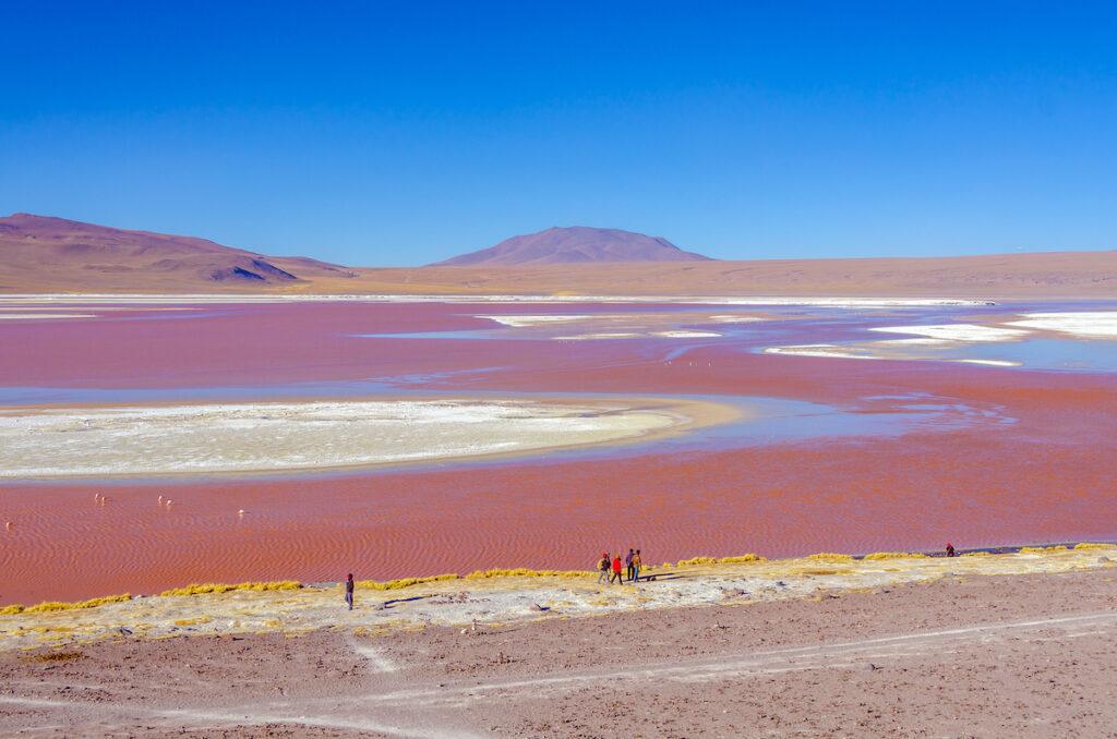 Laguna Colorada near the Uyuni Salt Flats in Bolivia.