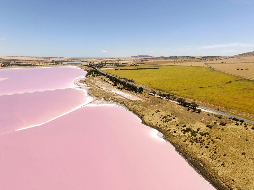 Lake Bumbunga in South Australia.