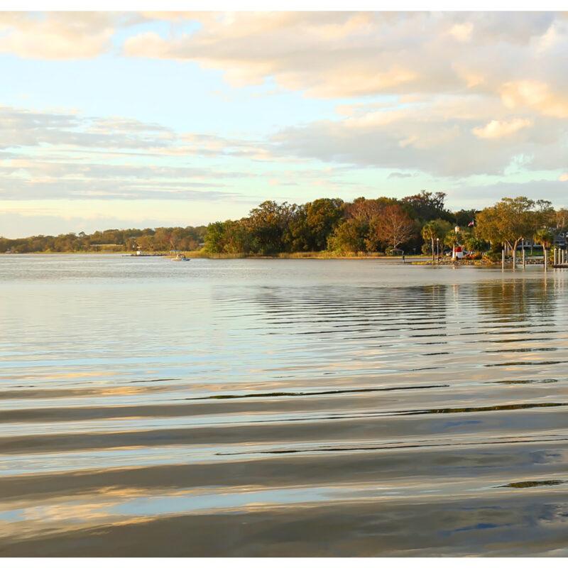 Lake Dora via Premier Boat Tours.
