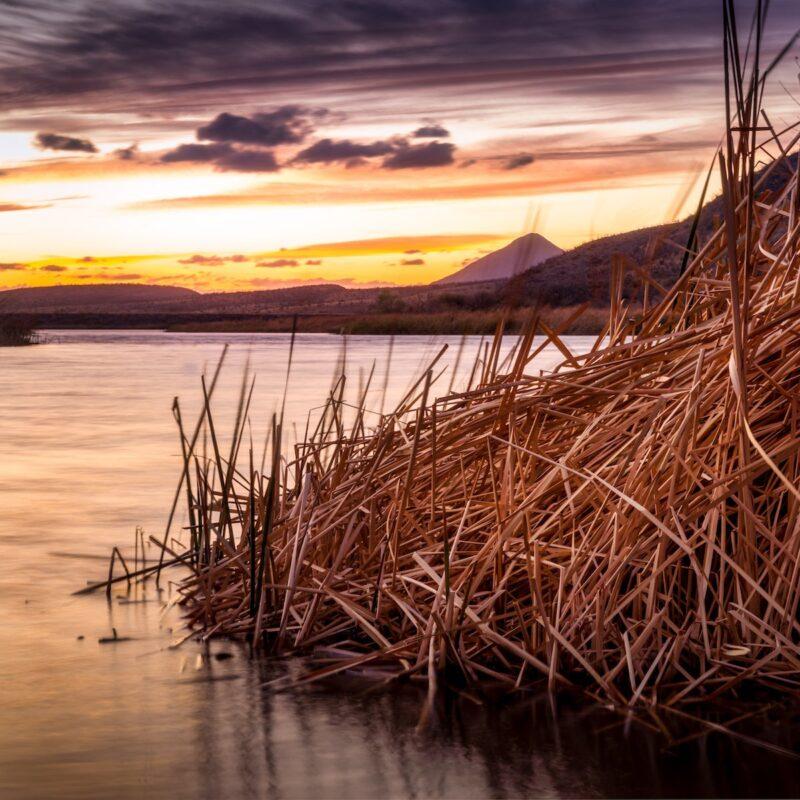 Lake Patagonia in Arizona at sunset.
